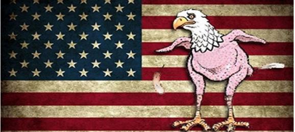 USA drapeau aigle nu